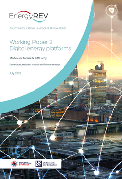 Policy and Regulatory Landscape Review Series: Working Paper 2